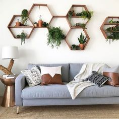 40+ Best Apartment Living Room Decor Ideas With Plants