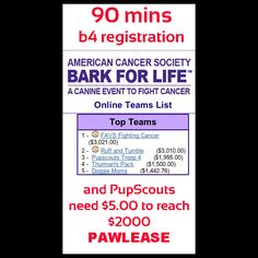 Please help Cuba and the PupScouts reach reach $2000. http://main.acsevents.org/site/TR/RelayForLife/BFLCY13EA?px=20917417=personal_id=48082