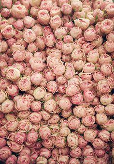 Flower Market 1 Photographic Print Pink Floral