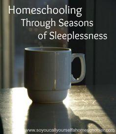 Homeschooling Through Seasons of Sleeplessness   So You Call Yourself A Homeschooler?
