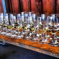 #Gewurtzraminer #wine samples from Diamond Estate #Winery in #Ontario. #whitewine (at Diamond Estate Winery)