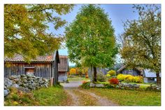 Autumn in �skhultsby... by Almqvist Photo on 500px