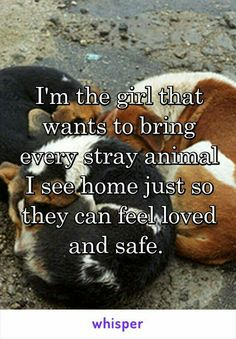 This is Definitely me. My heart breaks for homeless animals.