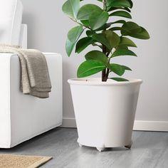 63 best Houseplants images on Pinterest in 2018   Houseplants ... Zinc Planters Ikea Html on