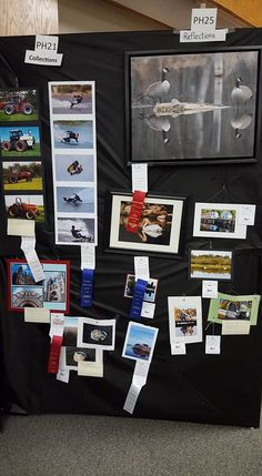 We had many photography entries in the 2016 fair - thanks to all who entered! See you next year! Reflection, Thankful, Storage, Photography, Decor, Purse Storage, Photograph, Decoration, Larger