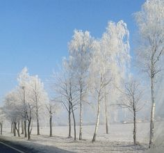 Somewhere in Poland, during the winter