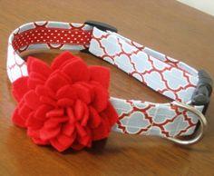 Such a cute dog collar, Cotton has a hydrangea one we love!