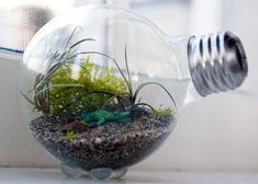 When it comes to repurposing, lightbulbs are a tried and true DIY go-to. Whether you're turning one into a bud vase or covering it with twine to masquerade as a pear, these versatile pieces of glass belong anywhere but in your trash. We've rounded up 20 brilliant ways to breathe new life into your burnt out bulbs. #GardenTwine