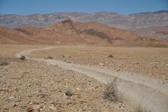 Richtersveld tour in Namaqualand by Pictures of scenery and geology information. Travel Tours, Tour Guide, Geology, South Africa, 4x4, Succulents, Deserts, Scenery, Mountains
