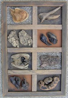 Samples of unique driftwood wall art created by ballardwoods