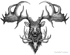 Graham's Ghost - Irish Elk and Elk Skull by DanielleTrudeau