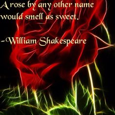 a rose by any other name is still a rose