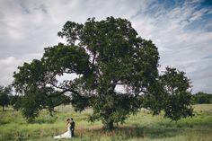 Photography: Jason + Anna Photography - http://www.stylemepretty.com/portfolio/jason-anna-photography   Read More on SMP: http://www.stylemepretty.com/2014/08/13/rustic-chic-austin-wedding-at-the-wildflower-center/