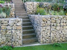 jardin en pente raide avec escalier en béton et mur de soutènement en gabion