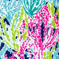 Skipper Printed Popover - Let's Cha Cha - Lilly Pulitzer