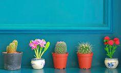 Decoración con plantas. Ideas para decorar tu casa con plantas y flores artificiales y naturales. Interior y Exterior. Salón, jardín, habitación. DIY. Manualidades.