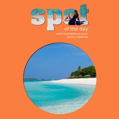 SPOT OF THE DAY - 리티비치 리조트 몰디브  /  Reethi Beach Resort (2015년 5월 30일) #리티비치리조트몰디브  #spotoftheday #리얼몰디브 #몰디브 #Maldives #몰디브여행사 #몰디브리조트 #traveling