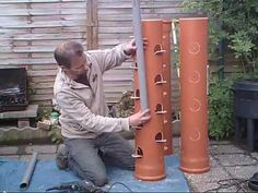 Urban garden idea / How to make a strawberry tower (a maximum of strawberries in a minimum of space)! Hydroponic Gardening, Container Gardening, Gardening Tips, Permaculture, Black Seed Oil Dosage, Strawberry Tower, Strawberry Garden, Flower Tower, Aquaponics System