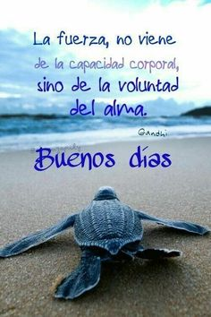 Good Morning In Spanish, Good Morning Funny, Good Morning Messages, Good Morning Good Night, Good Morning Quotes, Hello In Spanish, Christian Quotes Images, Cool Pictures Of Nature, Weekday Quotes