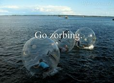 Zorbing just looks like so much fun. Too fun not to do at least once. I must do this.