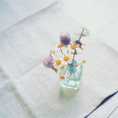 cute little arrangement!