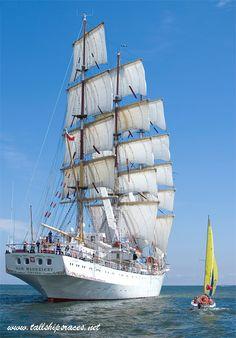 tallshipsraces.net - Tall Ships Forum - Żeglarze na Darze 2015 (1/1)