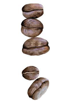Coffee Beans  by KendyllHillegas