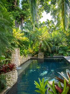 Key West Secret Garden Layers upon layers of lush green make this tropical backyard infinitely inviting. In the center of the plants, a small pool is like the crown jewel. Tropical garden design at it's finest. Tropical Backyard Landscaping, Landscaping Around Pool, Swimming Pool Landscaping, Backyard Pool Designs, Landscaping Ideas, Natural Backyard Pools, Pool Backyard, Driveway Landscaping, Small Tropical Gardens