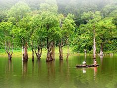 Twin Lakes of Balinsasayao in Dumaguete, one of the major tourist attractions in Negros Oriental. A diverse natural habitat where animals can move freely, as such the place offers many activities like: swimming, trekking, kayaking, fishing and boating. Breathtaking scenery here in our country… the Philippines! (Photo contributed by: Josel Odonzo)