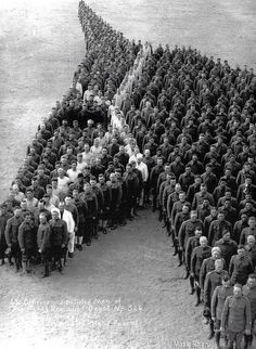 Tribute to 8 million horses,donkeys,and mules who died serving in wars.
