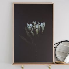 Stacey Weaver Photography has focussed on a still life floral photography with a…