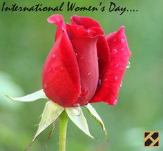 Happy women's day    By Hindicraft.com