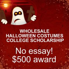 no essay scholarship niche school related