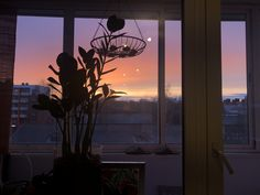 My Photos, Windows, Sunset, Sunsets, Window, The Sunset, Ramen