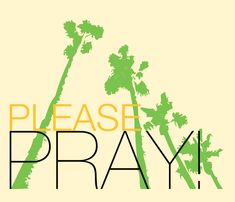 Pinned by Dede Diaz.... Please lift up my family in prayer~~ Jose, Luis, Dominick ,Ashley. Thank You God Bless.