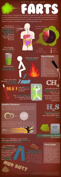 Everything you wanted to know about farts. (See prior information about poop.)