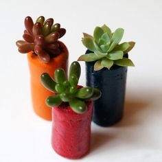 Make easy pots from recycled cork!