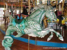 Dentzel Hippocampus Seahorse, Houston, TX