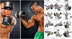 Cluster Sets Training Method For Mass And Strength - GymGuider.com