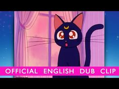 Sailor Moon - OFFICIAL DUB CLIP- Luna Appears! - Own Set 1 on BD/DVD 11/11/14 (I'm ROFL finding out that the chick who voiced Rukia from Bleach is voicing Luna!)