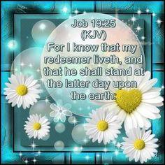 Jesus Scriptures, Scripture Verses, Bible Verses Quotes, Faith Quotes, Beautiful Bible Quotes, Book Of Job, King James Bible, Memory Verse, Favorite Bible Verses