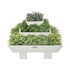 "Esschert Design 24x24x18"" Pyramid Planters, Light Grey (48.450 HUF) ❤ liked on Polyvore featuring home, outdoors, outdoor decor, light grey, garden decor, flower planters, flower stems, garden planters and outdoor garden decor"