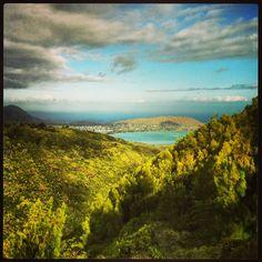 Heavenly Hawaii Loa Ridge~ #Hawaii #Hawaiiloaridge #ridge #hike #hiking #Hawaiian #trails #trail #peak #mountain #view #Oahu #Hawaiiloa #paradise #Paradisebay #paradisebayresort