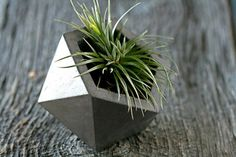 Concrete Geodesic Planter, Dark Gray by At Stuart modern outdoor planters