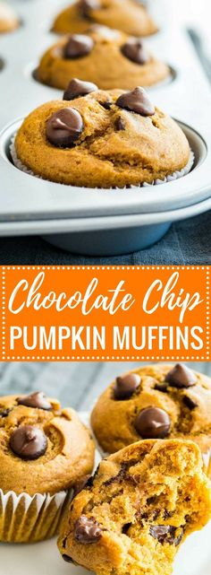 These Pumpkin Chocolate Chip Muffins make a great breakfast, snack, or lunchbox treat! With just the right balance of flavors and loaded with chocolate chips, these easy pumpkin muffins are sure to be a crowd-pleaser.