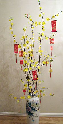 Hoa Mai (Ochna Integerrima) is one of many flowers that bloom during Tet season. These vibrant yellow blossoms can be seen decorated at almost every Vietnamese household during Tet.