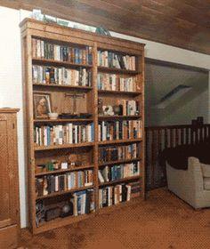 Librero - puerta.