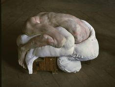 Berlinde de bruyckere,The Pillow
