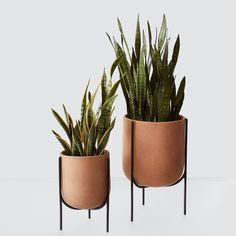 Mid-Century Modern Clay Planter with Steel Base – The Citizenry