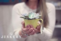 Ironstone Mug Succulent Planter - The Junkery